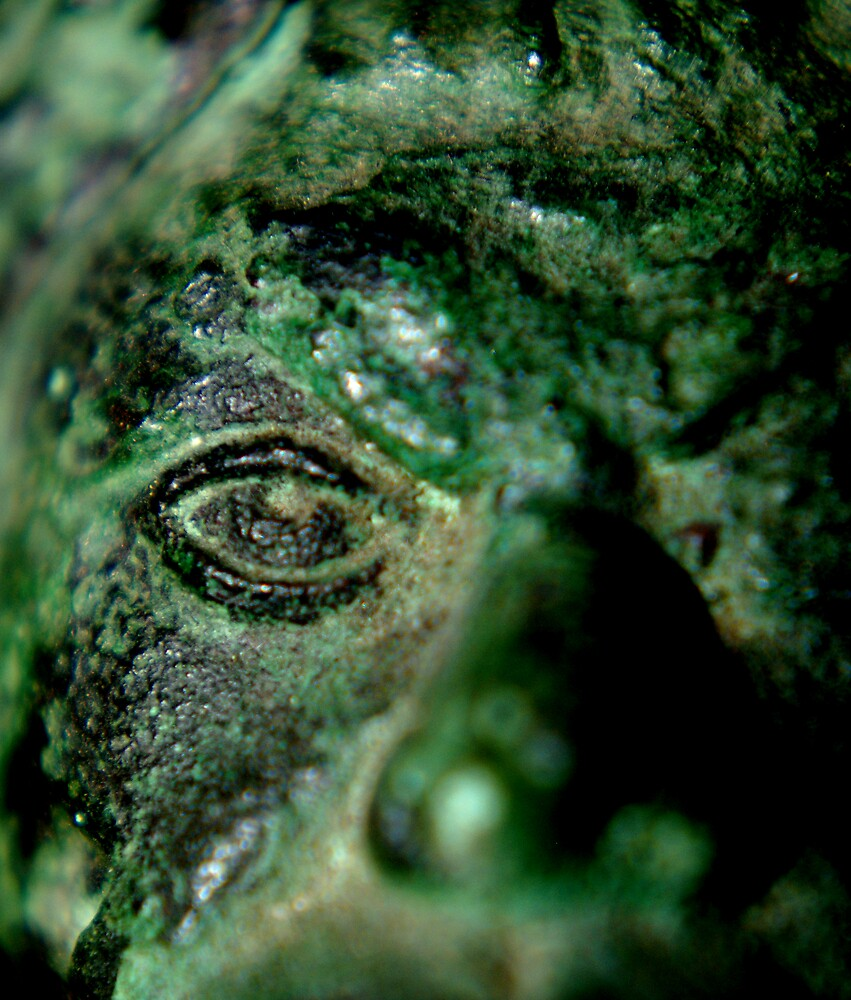 Looking into the eye of the Green Man by Mitch Messmore