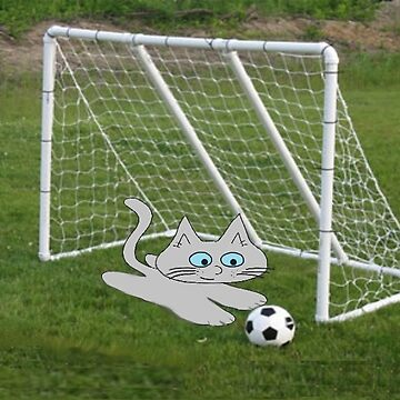 A Cat Plays Goalie In Back Yard by JohnsCatzz