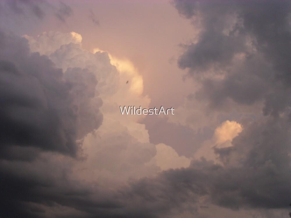 Storms A Brewin' by WildestArt