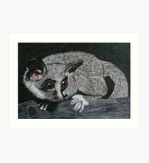 The Lesser Bush Baby Art Print