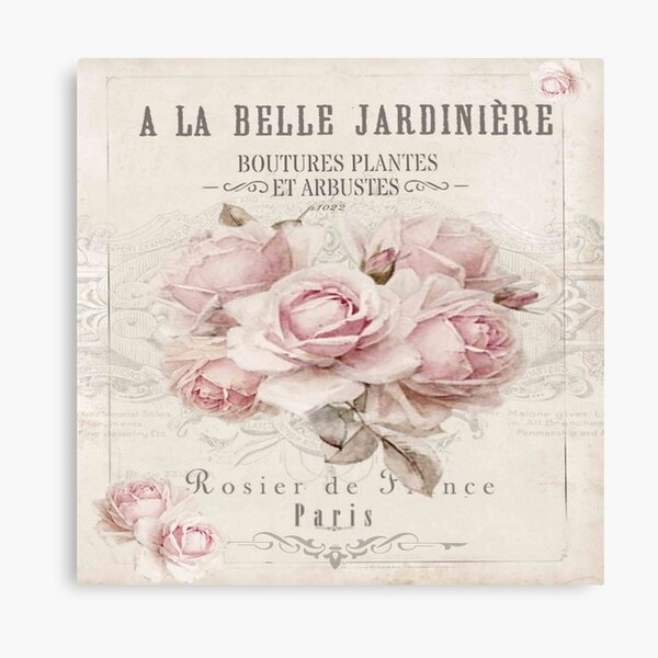 french shabby chic Canvas Print