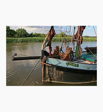 Cygnet, Snape Maltings Photographic Print