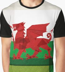 Wales Graphic T-Shirt