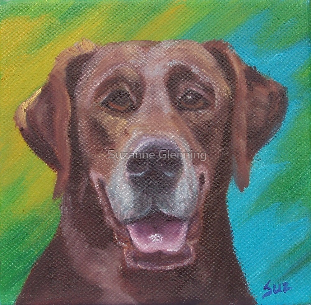 Brown Dog by Suzanne Glenning