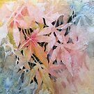 Acer Leaf Patterns by Val Spayne