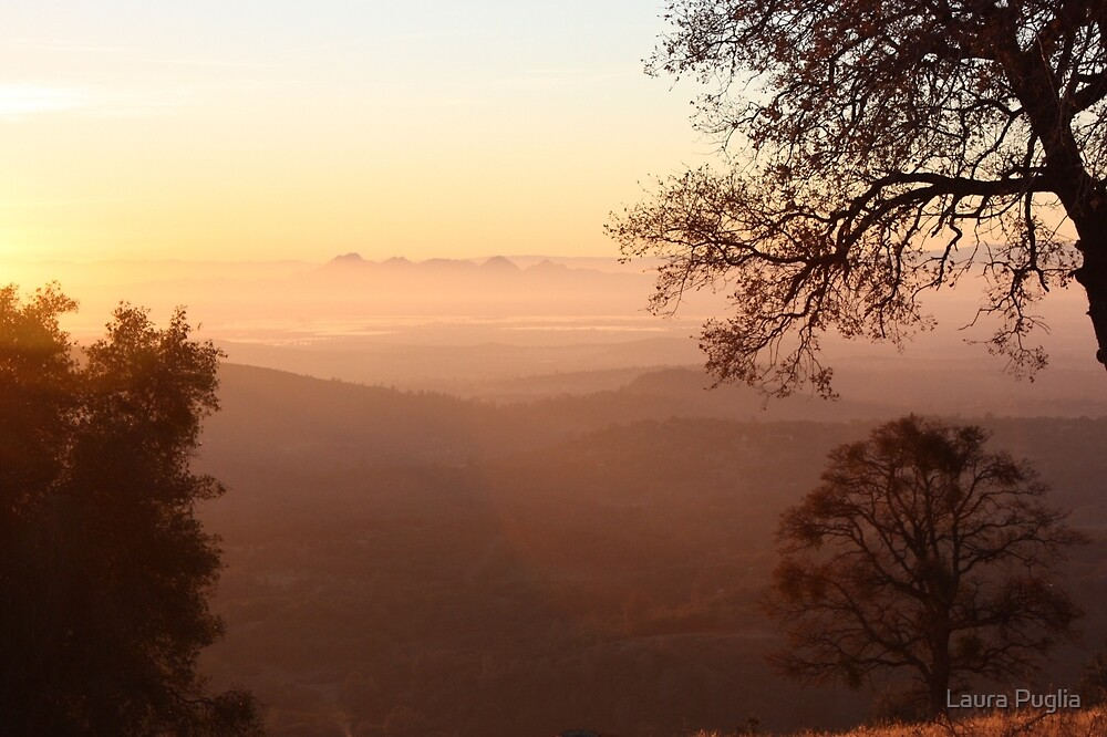 Sutter Buttes In The Fog by Laura Puglia