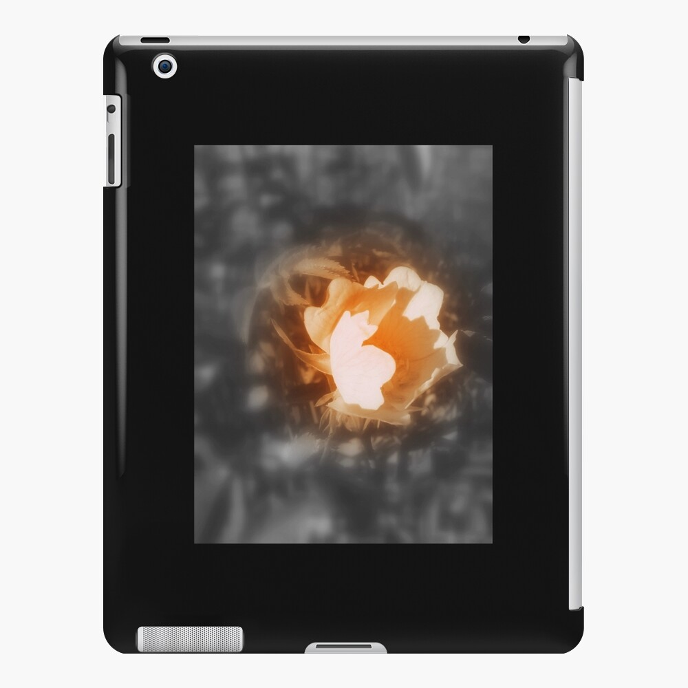 old-fashioned roses by Fox Creek & Columbia River 10 iPad Case & Skin