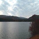 Loch Laggan by Tom Gomez