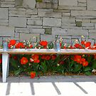 The tulip  bench by MarianBendeth