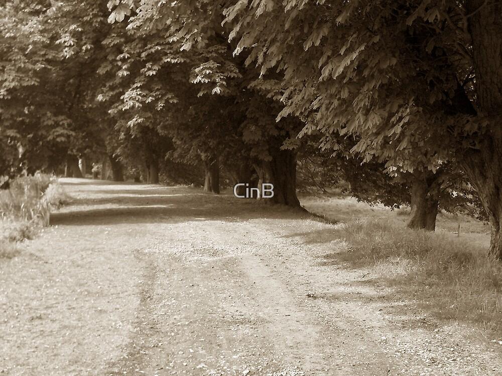 Oak Tree Shade by CinB