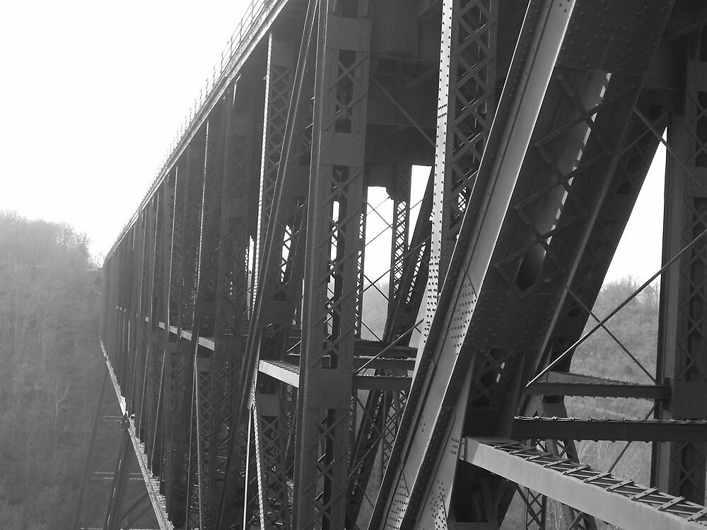 Bridge to Nowhere by Rebecca Ogden