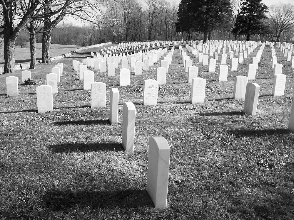 The Soldiers Who Fought For Us by Rebecca Ogden