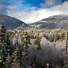 Blue skies in BC by Phil Scott