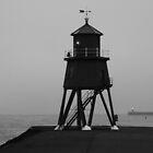 Herd Groyne Lighthouse - 2 by Tony Blakie