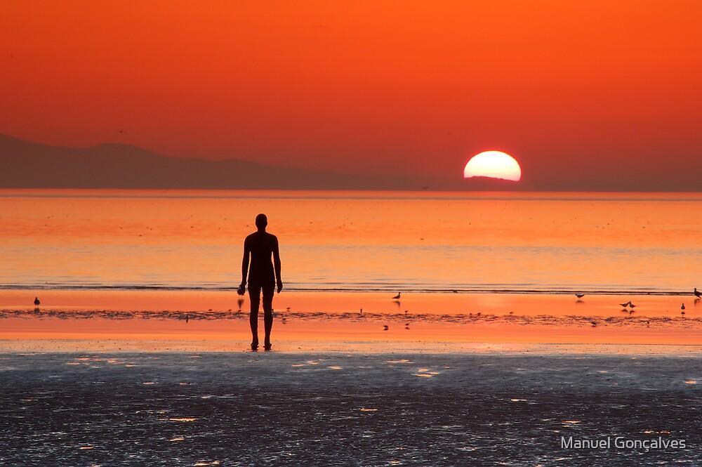 Iron man at sunset II by Manuel Gonçalves
