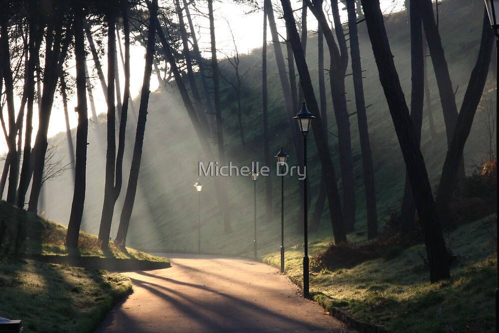 Light by Michelle Dry