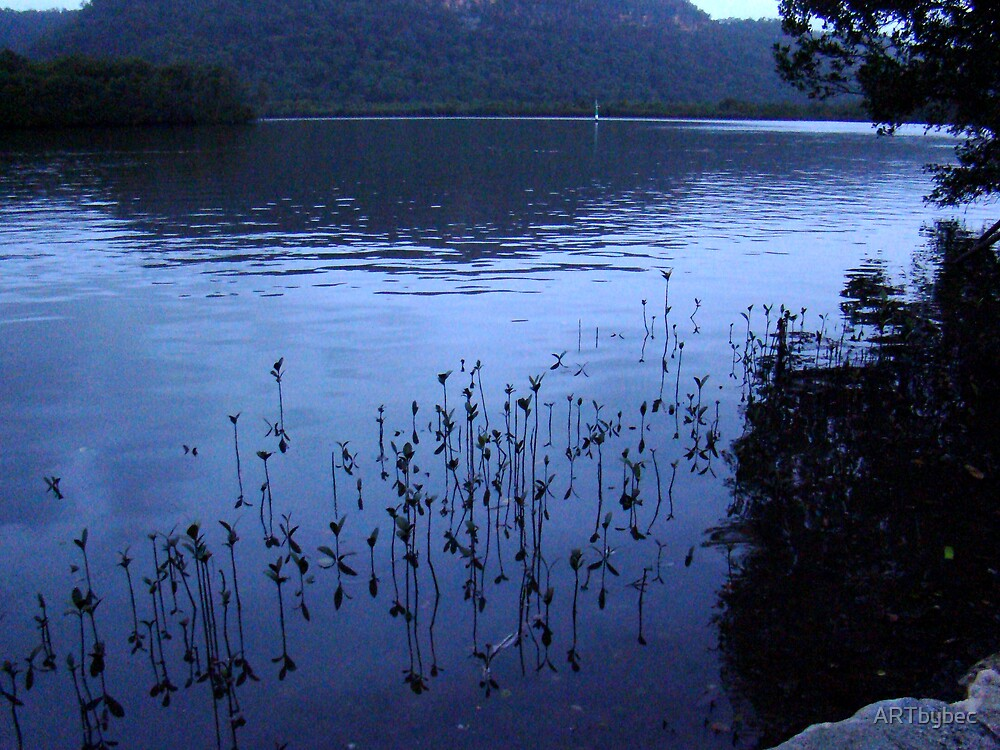 """ART by bec """"Twilight on the Hawkesbury """" by ARTbybec"""