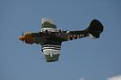Yak-52 @ Toogoolwah Festival Of Flight 2008 by muz2142