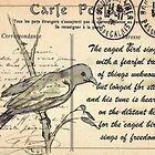 Why the caged bird sings by Maree Clarkson