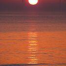 California U.K. Sunrise by wahboasti