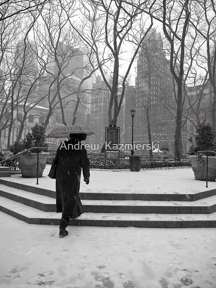 Snowy Walk in Park by andykazie