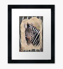 Chobe Zebra Framed Print