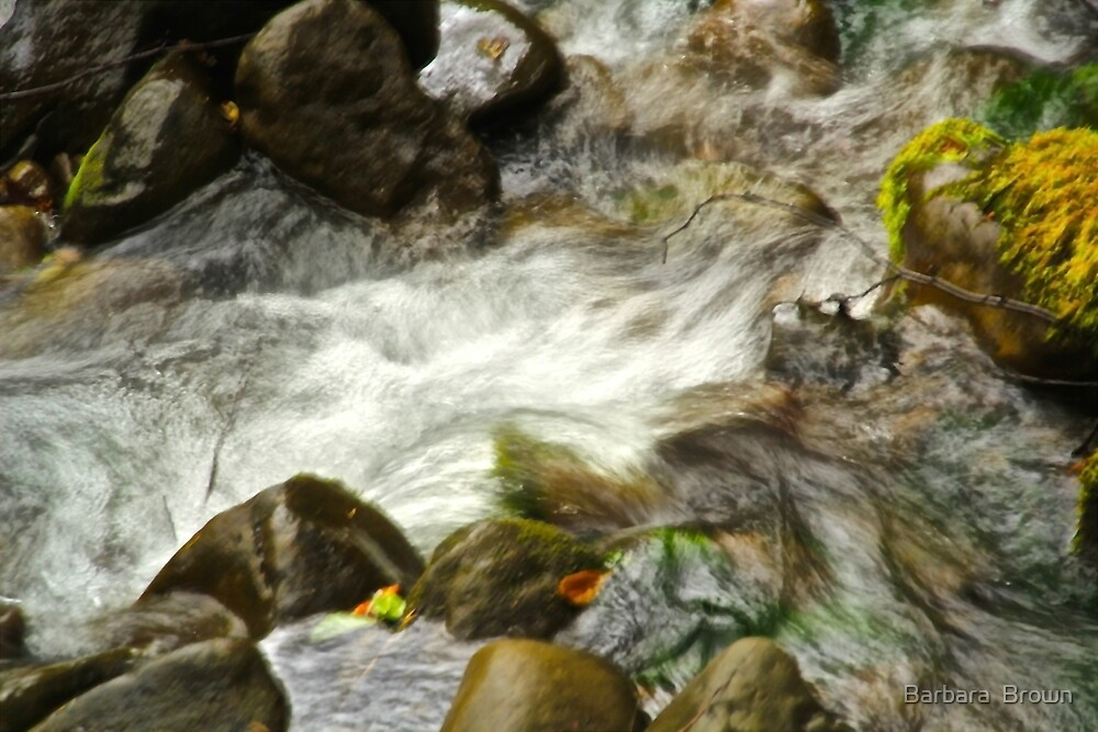 Flowing Abstract by Barbara  Brown