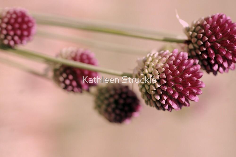Pink Spring by Kathleen Struckle
