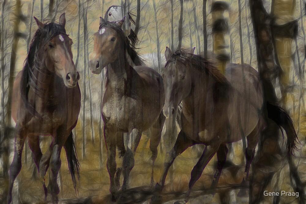 Everlasting Spirit by Gene Praag