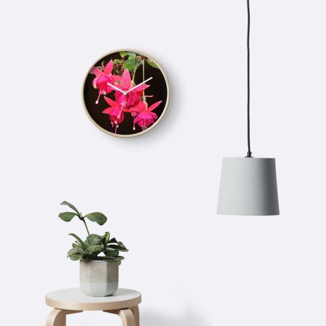 Fuchsia by agnessa38