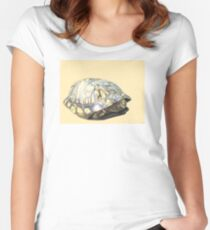 Box Turtle Women's Fitted Scoop T-Shirt
