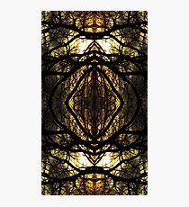 Trees graphic Photographic Print