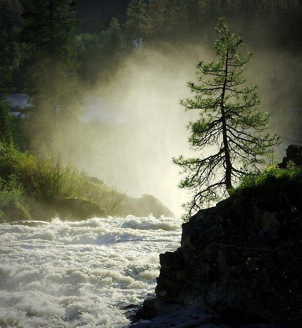 Meyers Falls by Troy Stapek