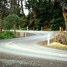 *Winding Road around Werribee River, Vic. Australia* by EdsMum