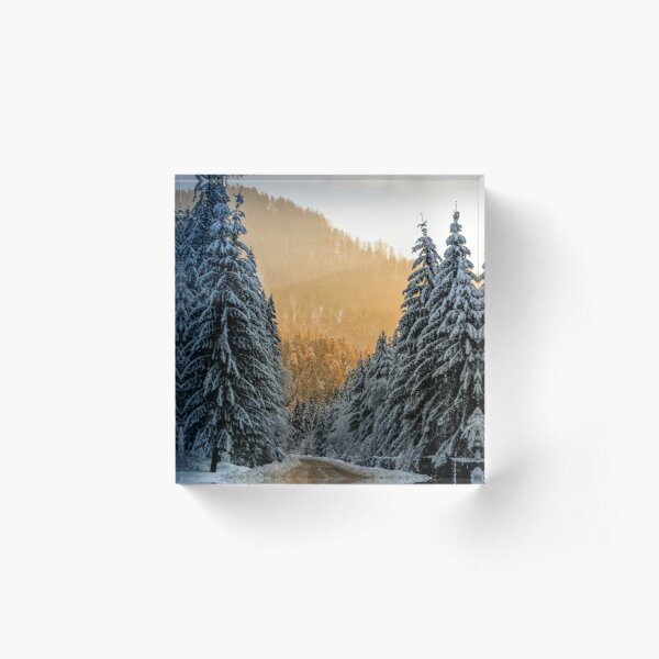 snowy road through spruce forest at sunset Acrylic Block
