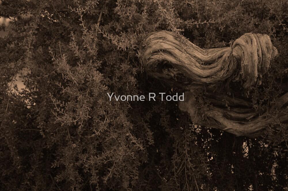 Elbow Tree by brwnsuga21