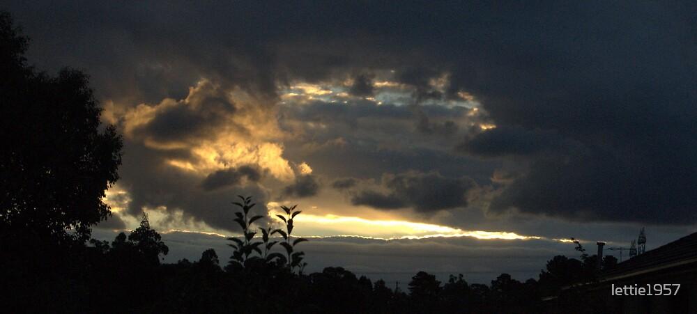 Sunset beauty  by lettie1957