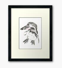 Pinguin Romeo Framed Print