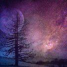 NighttimeFantasy by Clare Colins