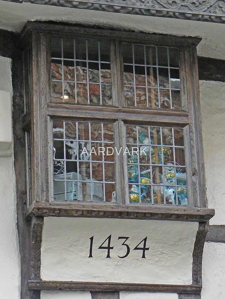 A Window On York's Stonegate by AARDVARK