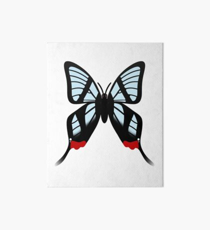 Glasswing Swallowtail Butterfly Art Board Print