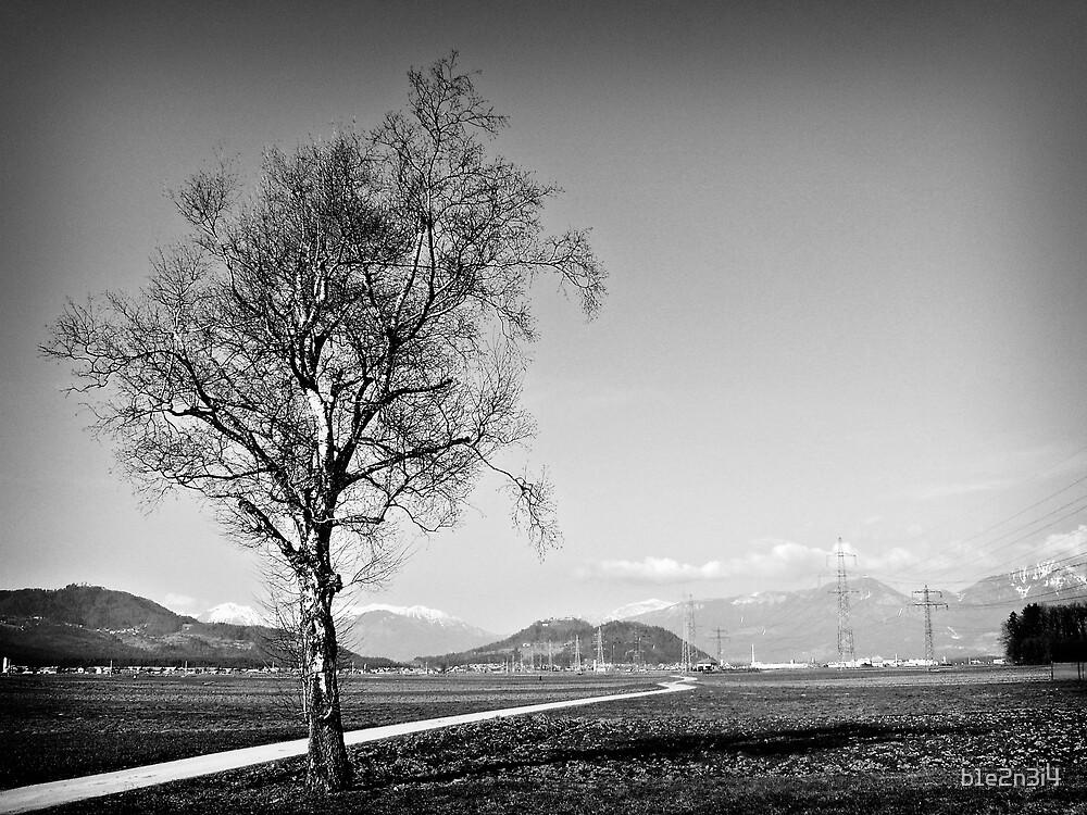 Tree and path by b1e2n3i4