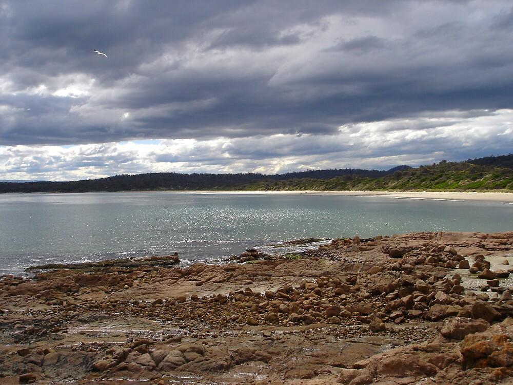 Tazmanian Seascape by Jo Long