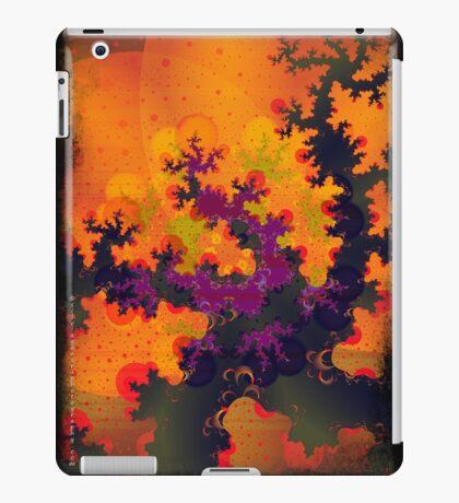 Moons iPad Case/Skin