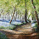 Morning Blue by Paula Oakley
