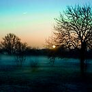 A winters morning by GlennRoger