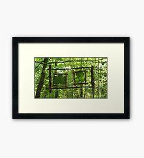 Framing Natue Framed Print