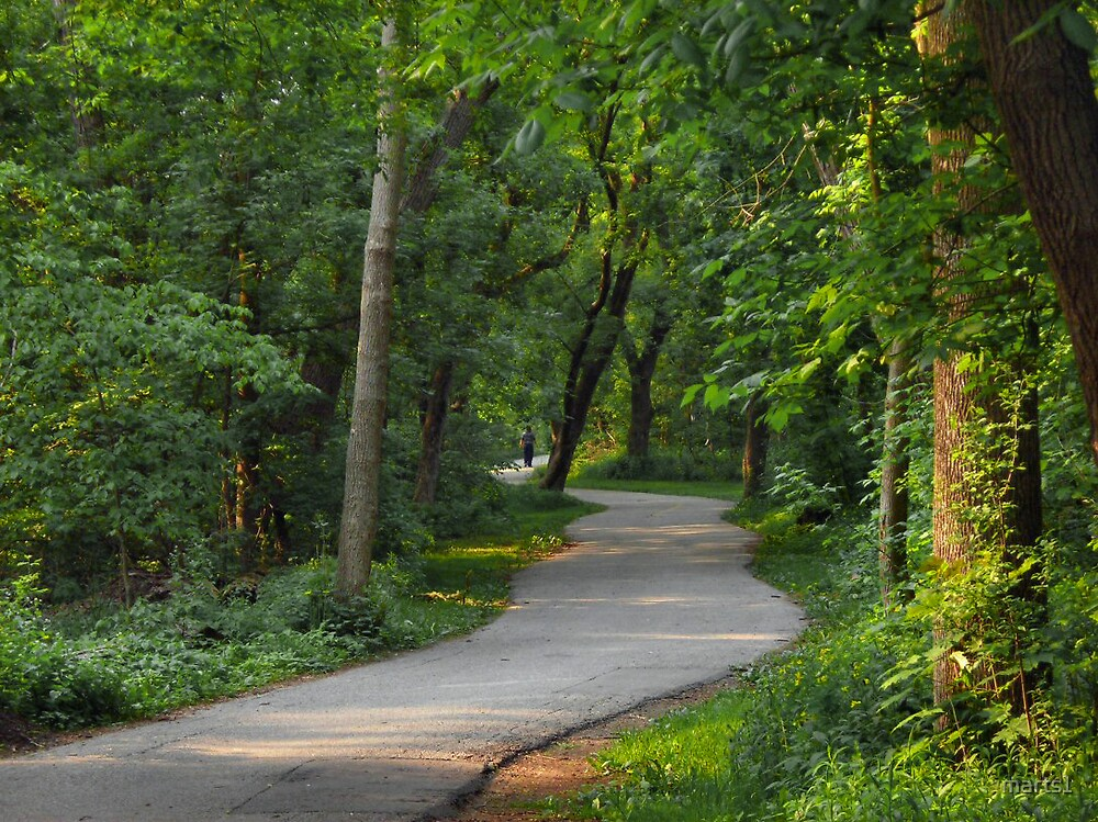 Nature trail by marts1