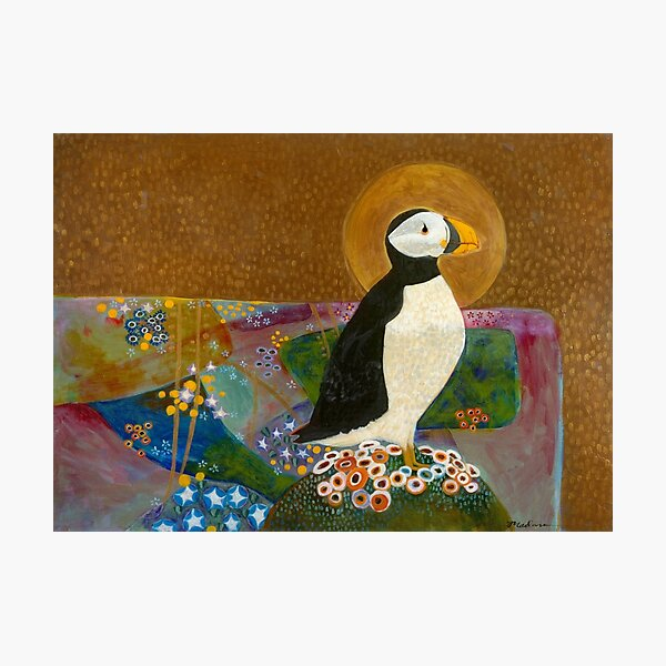 Summer Puffin Photographic Print