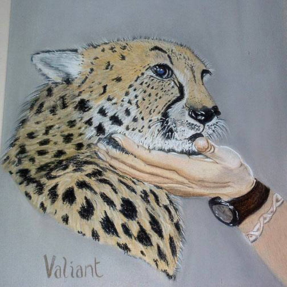 Blind Cheetah by Alexart